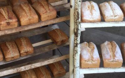 commande de pains