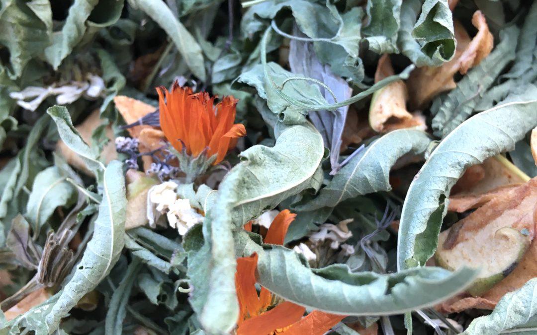 Je crée mes tisanes : les bases en herboristerie
